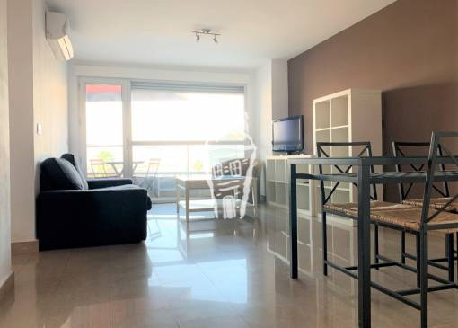 Apartment - Rental - Alicante - Centro