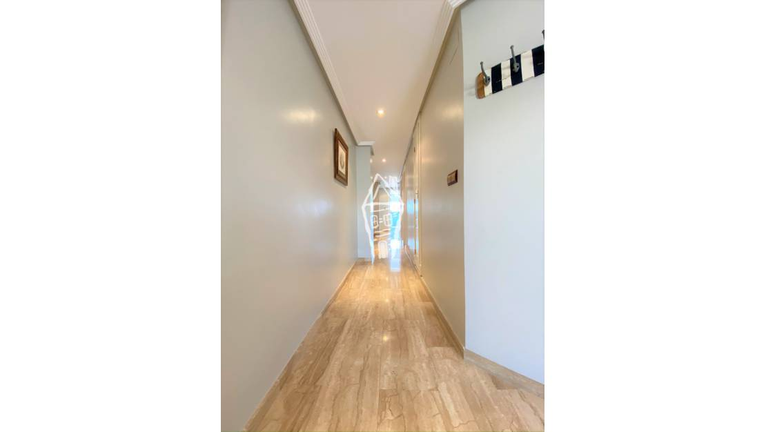 Rental - Penthouse - Alicante - Centro